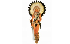 Picture Indian, feathers, figure, weapons, girl