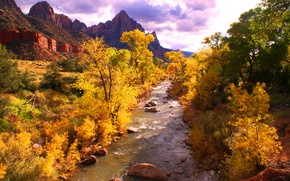 Picture autumn, forest, the sky, trees, mountains, clouds, river, stones