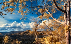 Picture autumn, the sky, clouds, mountains, tree