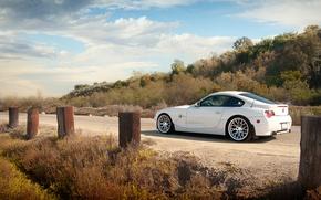 Picture road, BMW, BMW, white, white, Z4M