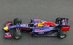 Picture Racer, Formula 1, Vettel, Champion, Sebastian, RB10, Red Bull Racing