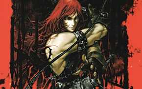 Picture blood, sword, vampire, whip, art, muscles, Castlevania, Simon Belmont, Ayami Kojima