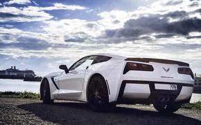Picture Corvette, Chevrolet, Car, White, Sport, Stingray, 2014, Rear