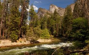 Picture USA, California, parks, Yosemite.
