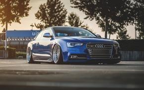 Picture Audi, Audi, blue, blue, suspension