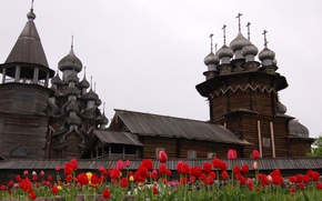Picture flowers, close-up, Kizhi