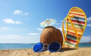 Wallpaper beach, summer, coconut, vacation