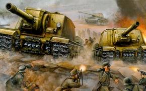 Picture war, Wallpaper, attack, ISU-152, St. John's wort