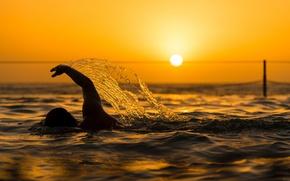Wallpaper swimmer, the sun, swimming, pool, sunset, squirt