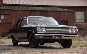 Wallpaper Chevrolet, 1965, Chevrolet, Chevelle, Chevelle