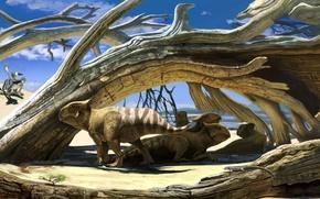 Picture desert, small, Protoceratops, dinosaurs
