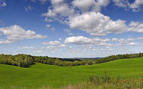 Picture greens, field, summer, the sky, grass, the sun, clouds, trees, Wisconsin, USA, Wisconsin