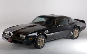 Picture retro, bandit, pontiac, Pontiac, 1978, trans am, bandit, Firebird, firebird