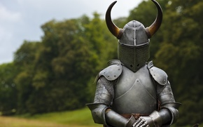 Picture armor, horns, helmet, knight, hollow crown
