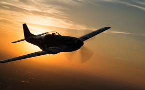 Picture flight, Mustang, fighter, P-51