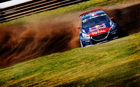 Picture Dust, Peugeot, Skid, Peugeot, 208, WorldRX