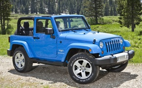 Picture forest, blue, Jeep, Sahara, the front, Wrangler, Ringler, Jeep, Anlimited, Unlimited, Sahara SUV