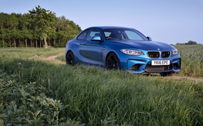 Picture BMW, Blue, Road