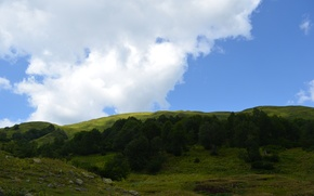 Picture stones, Alpine meadows, the sky, grass, trees