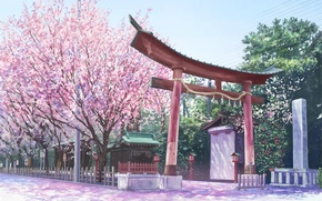 Picture road, wire, the fence, rope, gate, Sakura, Red, temple, flowering