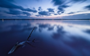 Picture sea, the sky, water, clouds, landscape, nature, reflection, background, tree, blue, widescreen, Wallpaper, the evening, …