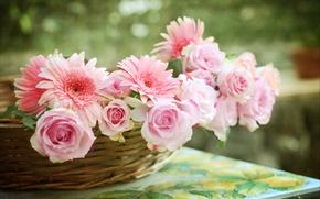 Picture roses, basket, gerbera, © Elena Di Guardo