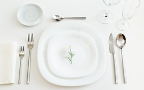 Picture flower, glasses, plate, knife, saucer, fork, spoon, serving