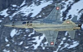 Picture fighter, flight, multipurpose, Tiger II, F-5E, easy, Tiger II