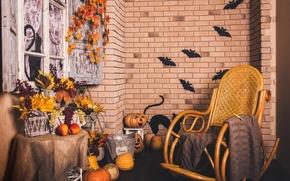 Picture autumn, leaves, wall, basket, brick, chair, window, grapes, pumpkin, Halloween, halloween, autumn, grapes, pumpkin, Holidays, …