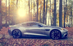 Picture forest, the sun, Aston, martin