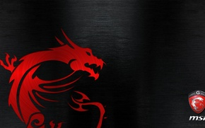 Picture Dragon, Gaming, MSI