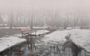 Wallpaper winter, fog, Park, benches