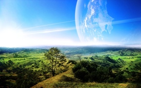 Picture greens, trees, landscape, planet