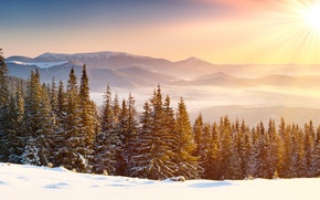 Wallpaper winter, the sky, clouds, snow, trees, landscape, mountains, nature