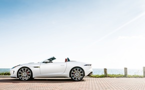 Picture Jaguar, white, F-Type, profile
