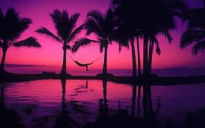 Picture pool, beach, man, mood, pleasure, palms, hammock, purple sunset