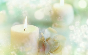 Wallpaper snowflakes, rose, candles