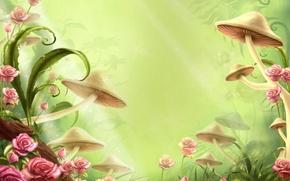 Wallpaper flowers, childhood, clearing, mushrooms, tale