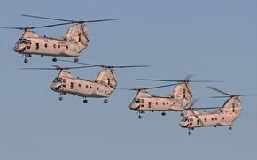 Picture the sky, flight, aviation, helicopters