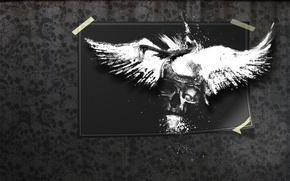Wallpaper photo, the darkness, skull