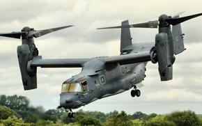 Picture the tiltrotor, Osprey, transport, CV-22
