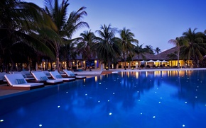 Wallpaper trees, palm trees, the evening, pool, The Maldives, the hotel, sun loungers, Maldives, Velassaru