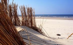 Wallpaper water, beach, sand
