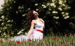 Wallpaper summer, girl, field