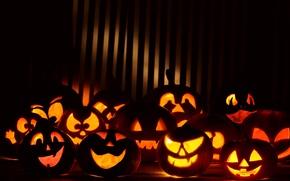 Picture holiday, pumpkin, Halloween, night, halloween gang