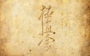 Picture parchment, Kyokushin, chinden, martial art, Kyokushinkai, the style of karate