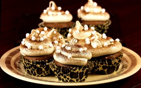 Picture chocolate, plate, cream, dessert, cupcakes, marshmallows, powder