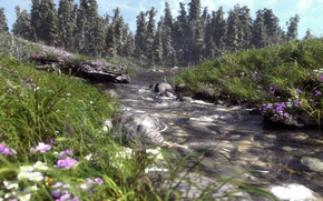Picture grass, trees, flowers, nature, river, stones, spruce, art, river, field, coniferous