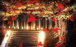 Picture autumn, trees, Park, the evening, lights, pair, ladder, alley, date, maple leaves