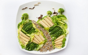 Picture food, corn, plate, vegetables, salad